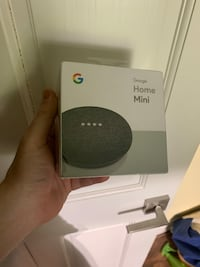 Google home mini (brand new) Washington, 20016