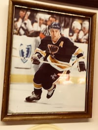 Saint Louis blues Adam Oates framed picture Florissant, 63033