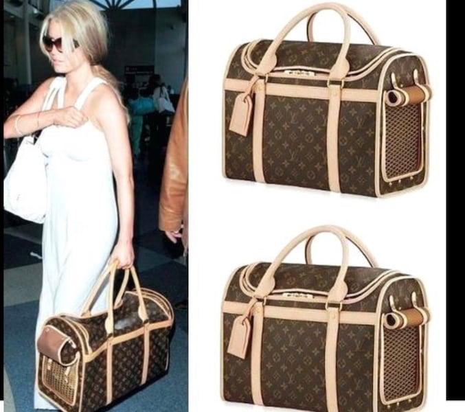 Used Louis Vuitton Pet Carrier For