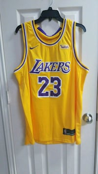 Lebron James Lakers Jersey sz L Sulphur, 70663