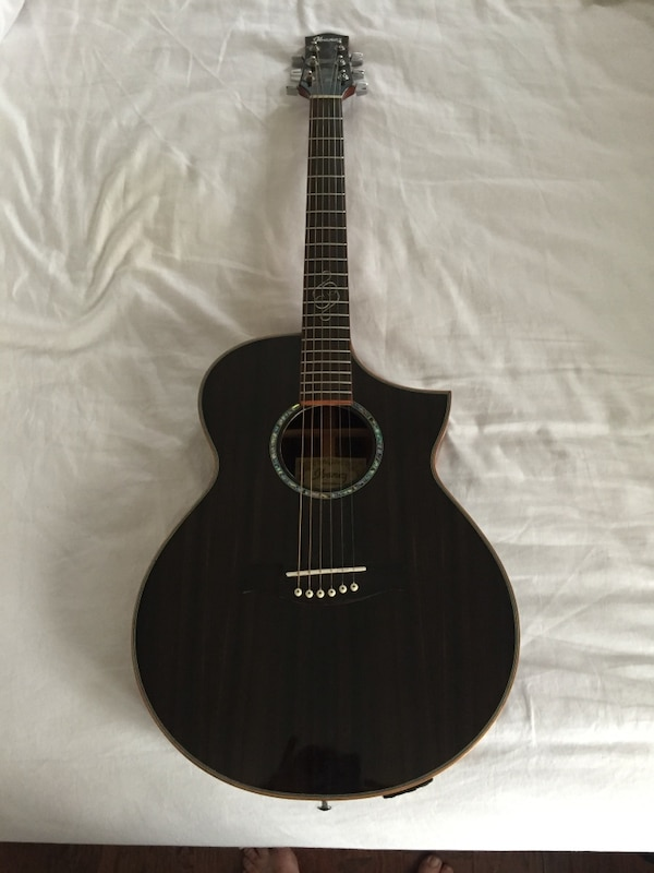 Ibanez Exotic Wood Acoustic Electric Guitar