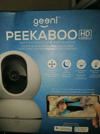 Wireless camera baby monitor pan tilt and zoom
