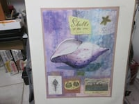 Brand New, Sealed, 1997 Fred Hill Shells of the Sea Poster  Winnipeg