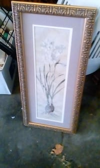 Flower Picture Professionally Framed Allentown, 18102