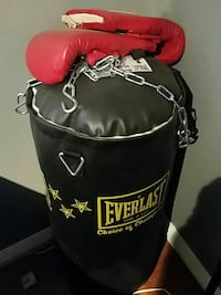 black Everlast heavy bag with pair of red training 3729 km