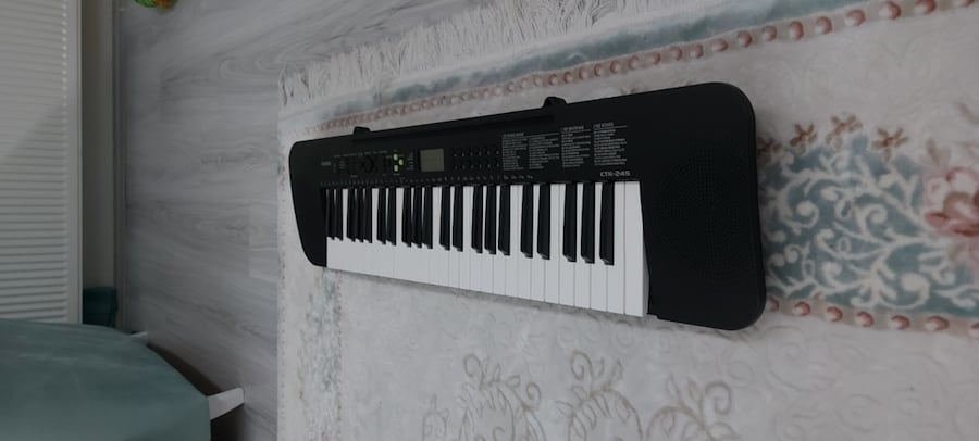 ORG  Model (Casio CTK- 245 )Hem Pille Hem Elektrtikle Calisiyor. 1