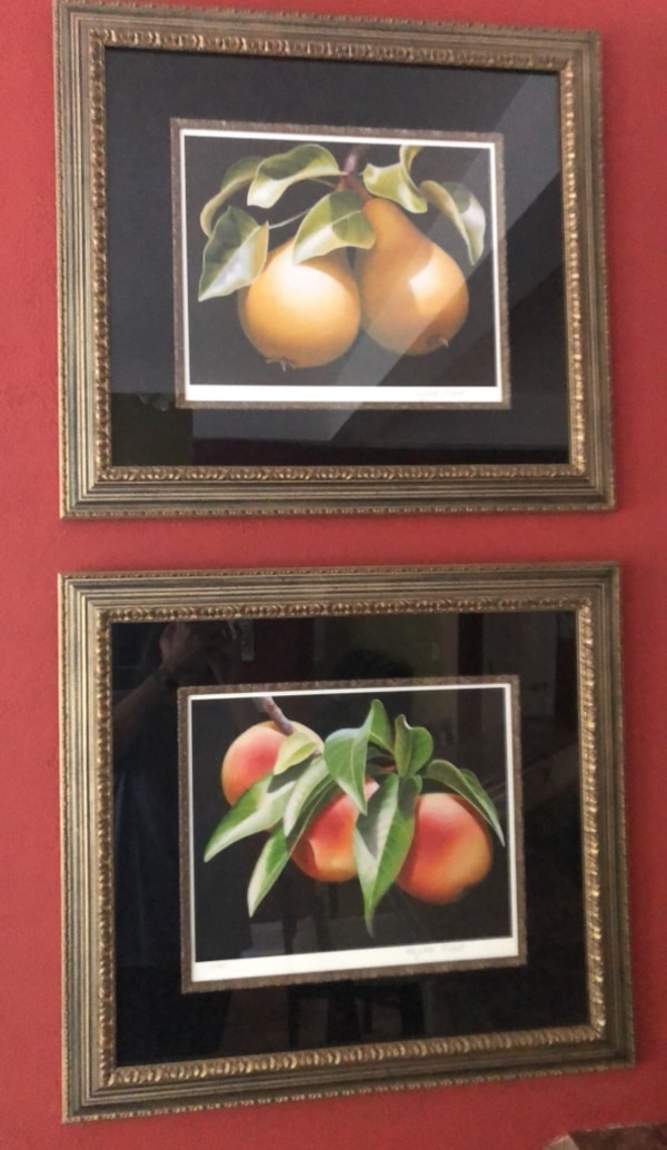 Used Two Brown Wooden Framed Painting Of Flowers For Sale In