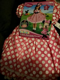 New Pink Minnie Costume Concord, 28027