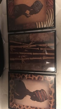 3 plastic framed with glass pictures 3810 km