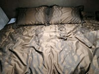 Queen comforter with two pillows and pillow covers Reno, 89523