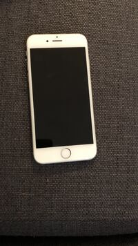 Silver iphone 6s with black case