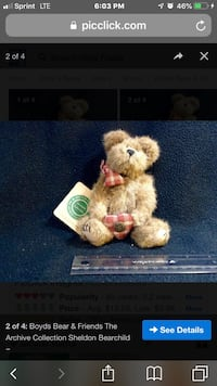 White and brown bear plush toy Silver Spring, 20904