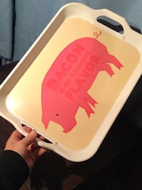 PLASTIC SERVING TRAY  Edmonton, T6E 0R2