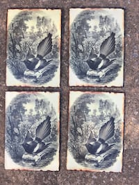 4 Metal Bird Pictures-Great for inside/outside-Nice on fence. $6 EACH Norman, 73071