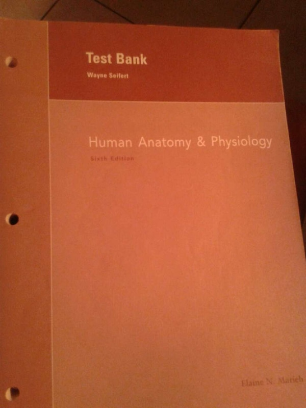 Used Test Bank Wayne Seifert Anatomy And Physiolo For Sale In