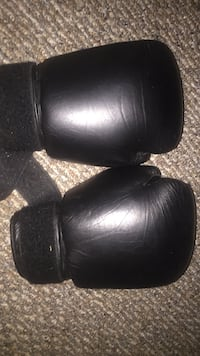 Everlast boxing gloves Anchorage, 99577