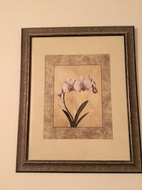 white moth orchid painting and brown frame