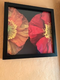 red and black flower painting Richmond, 94805