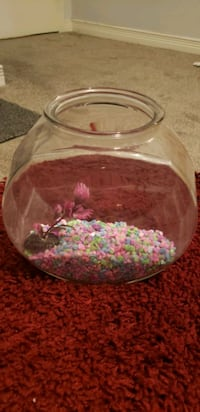 Small Fish Bowl- 1.5 g*ROCKS INCLUDED*