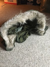 Extreme Cold Weather Hood for Parka