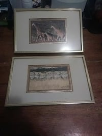 two herd of zebra and giraffe photo with gray frames