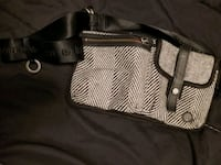 Lululemon fanny pack for walking dogs Mississauga, L5A 1K8