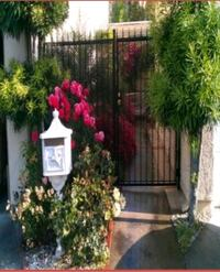 House for Rent (Cypress)