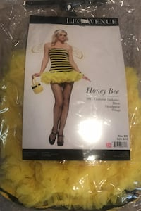 Honey Bee Costume. Upper Marlboro, 20772