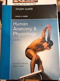 Human anatomy and physiology study guide Toronto, M4W