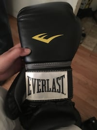 Everlast 12oz boxing gloves $20 Edmonton, T6G 1G2