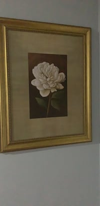 white petaled flower painting with brown wooden frame Brampton, L6Y 4X9