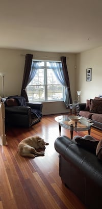 ROOM For rent 4+BR 3.5BA Columbia