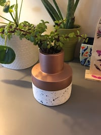 Modern and cool vase for flowers or succulents  Long Beach, 90815