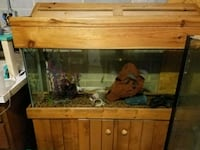 55 gallom aquarium with canopy and stand