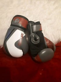 Centry 14 oz boxing gloves Coquitlam