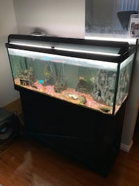 60 Gallon Fish tank and accessories Calgary, T3J 1A7