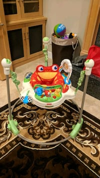 Rainforest Jumperoo- great condition!  Dublin, 94568