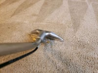 Carpet cleaning Skokie