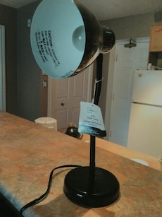 Stand fan and desk lamp