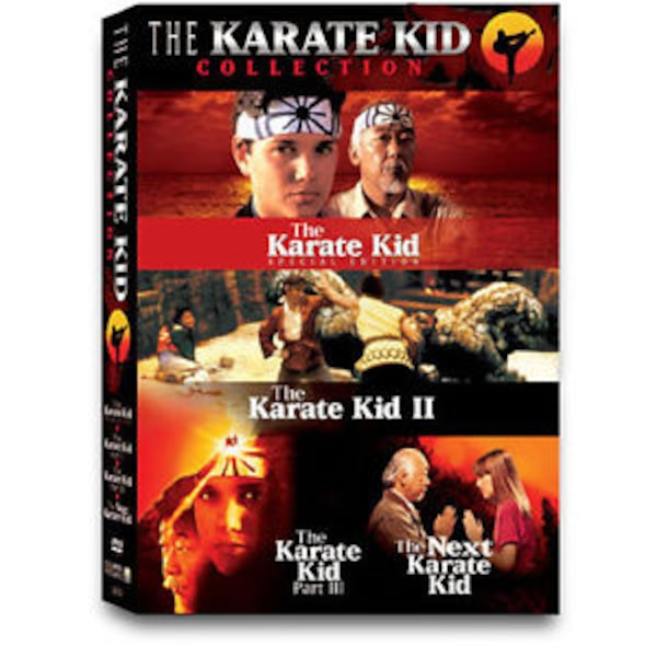 the karate kid video game