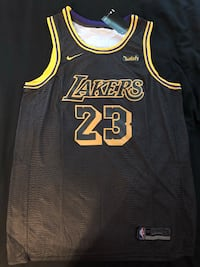 *****BRAND NEW, STITCHED, LEBRON JAMES #23 LAKERS JERSEY***** Mc Lean, 22102