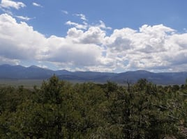 Gorgeous potential cabin site nestled in the Sangre de Cristo Mounatins