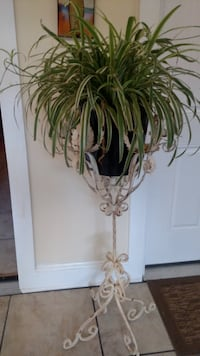 Antique wrought iron plant stand null