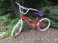 20 inch Magna Girls bicycle Lincolnshire, 60069