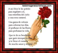 red rose with a mi dios le he pedido text overlay Arlington, 76013