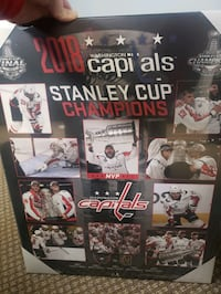 2018 Capitals Stanley Cup Champions glass framed picture collage