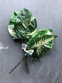 Green leafs for decorating for arts and crafts