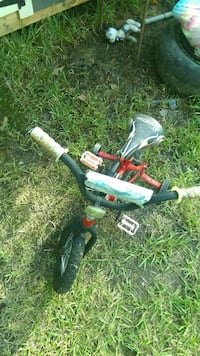 toddler's red and black training bike
