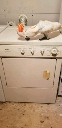 white front-load clothes dryer Parrot not included Sherwood Park, T8G 1B2