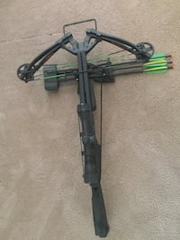 Crossbow and compound bow and target
